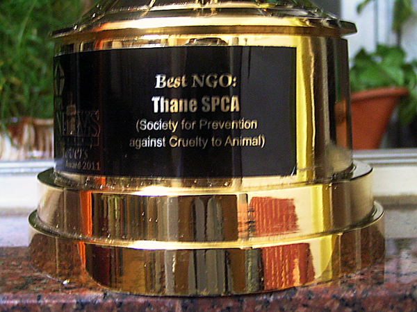 NBC Best NGO Award