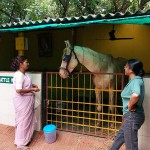 Shakuntala & Irani with Jack at TSPCA